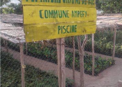 Pepiniere Ampefy