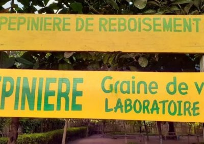 Pepiniere de reboisement Laboratoire