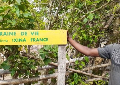 Pepiniere IXINA France