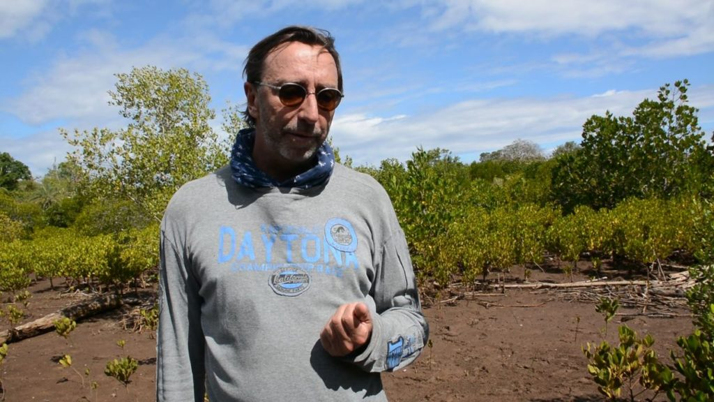 ONG Belge compense les émissions de carbone par la reforestation