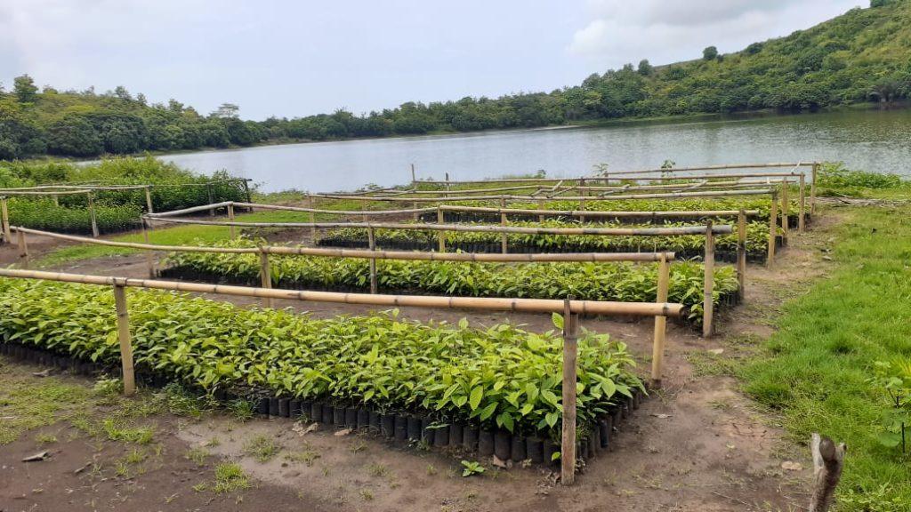 Tree nurseries sponsored by Graine de Vie Ecopartners