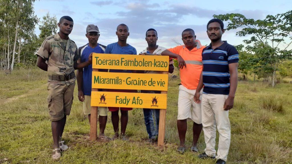Reforestation avec l'armée, résultats après 20 jours