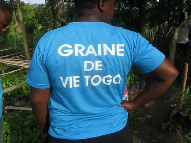 Distribution of seedlings Graine de vie Togo