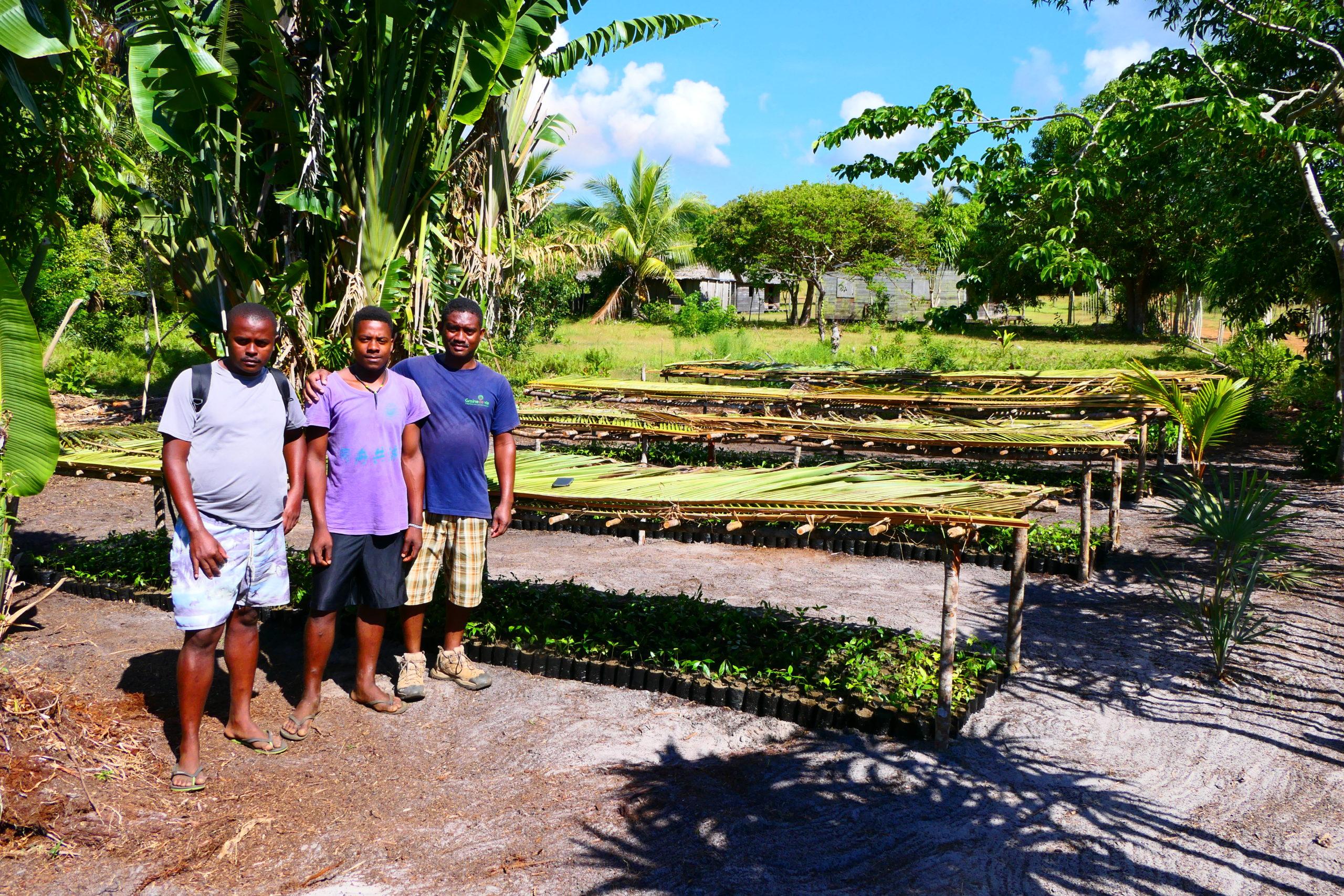 pépinières Masoala Ampanavoana