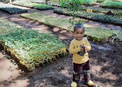 apprenons aux enfants à planter des arbres