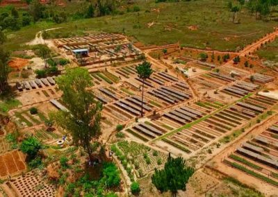 Pépinière centrale d'Antananarivo