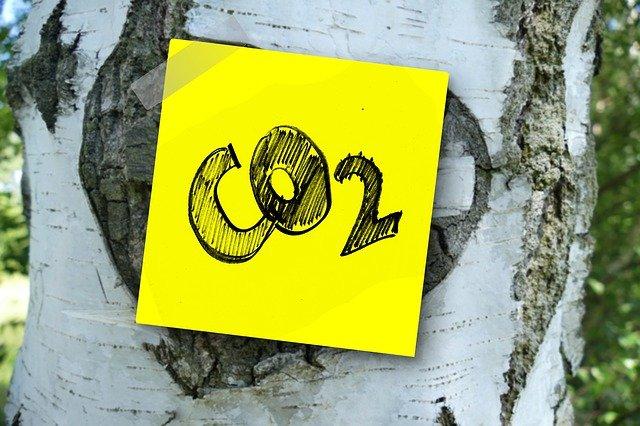 CO2 Grainedevie